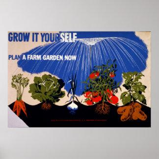 Poster vintage do jardim vegetal