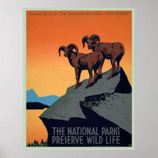 Poster vintage do parque nacional