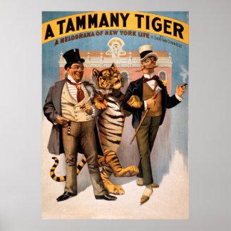 Poster vintage do tigre de Tammy