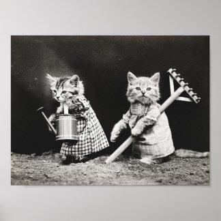 Poster vintage vestido bonito dos gatos