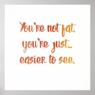 Poster Você não é gordo