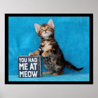 Poster Você teve-me no gatinho de Bengal do Meow