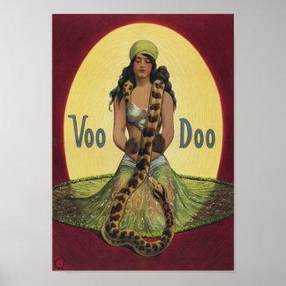 Poster Voo Doo