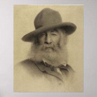 Pôster Walt Whitman: O bom poeta cinzento