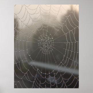 Pôster Web de aranha com orvalho da manhã