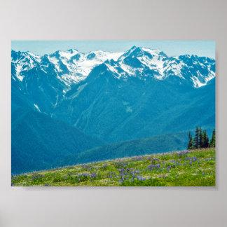 Poster Wildflowers e montanhas