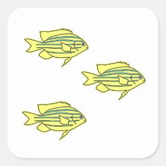 Poucos peixes listrados amarelos do recife adesivo quadrado