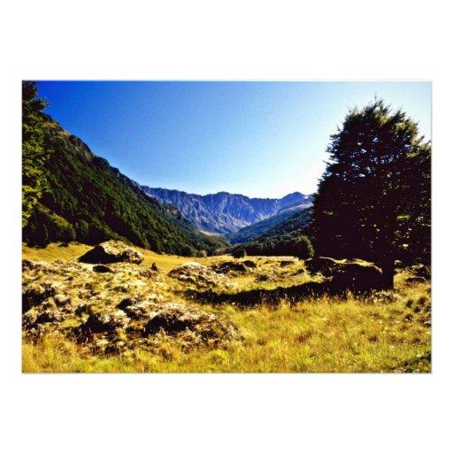 Prado, parque nacional de aspiração da montagem, i convite
