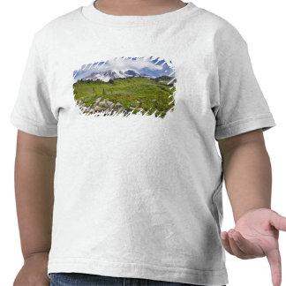 Prados da angra e do wildflower de Edith no Tshirt