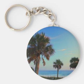 Praia da Cidade do Panamá, palmeiras de Florida Chaveiro
