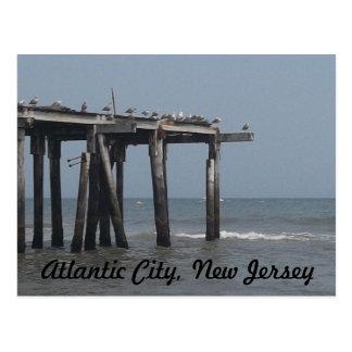 Praia de Atlantic City com cartão dos pássaros