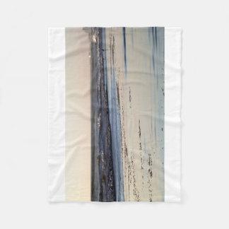 Praia de Ormond do por do sol da praia Cobertor De Lã