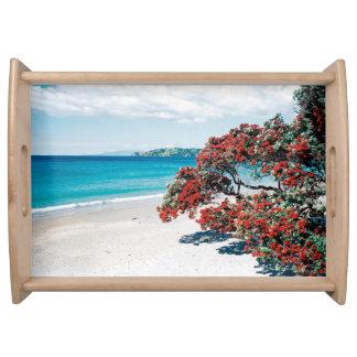 """Praia de Waiheke maravilhoso"" - Onetangi Bandejas"
