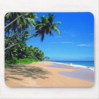Praia do paraíso e tapete do rato tropicais dos pa mouse pad