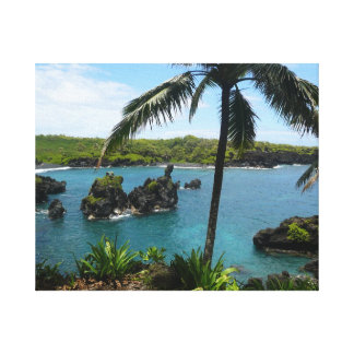Praia do paraíso - Maui Havaí Impressão De Canvas Esticada