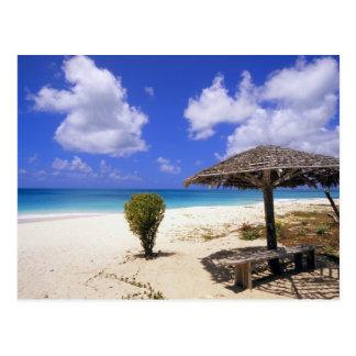 Praia do ponto dos Cocos, Barbuda, Antígua Cartão Postal