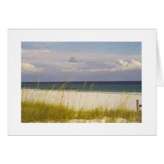 praia no cartão do Golfo do México 2