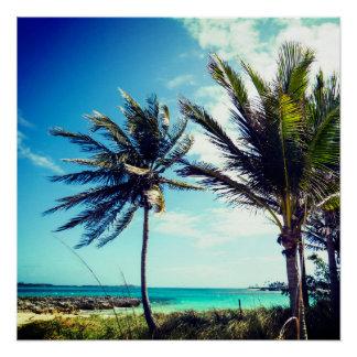 Praia tropical poster perfeito