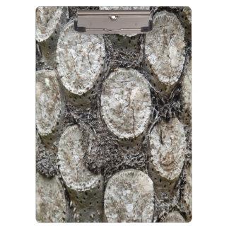 Prancheta da árvore da samambaia de prata