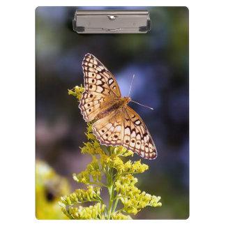 Prancheta da borboleta