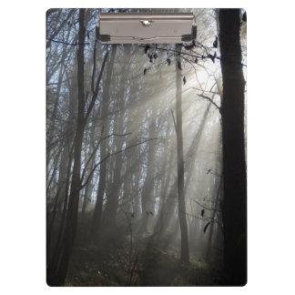 Prancheta da névoa da manhã da floresta
