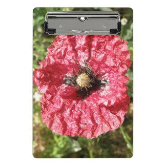 Prancheta macro da flor vermelha bonito da papoila