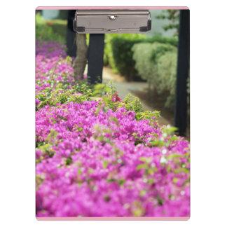 Pranchetas coleção floral