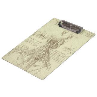 Pranchetas Coluna espinal da anatomia humana por Leonardo da