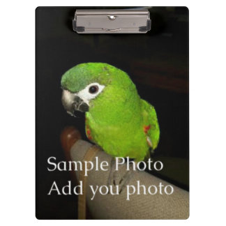 Pranchetas Foto Cllipboard (em ambos os lados)