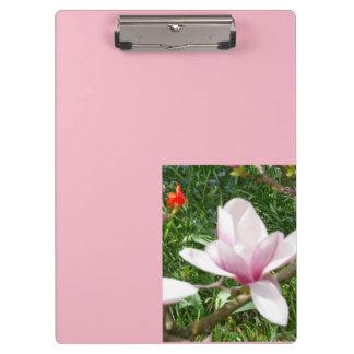 Pranchetas Magnólia cor-de-rosa de florescência 01,7