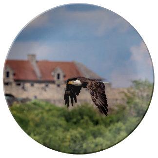 Prato Águia americana que passa o forte Ticonderoga