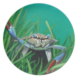 Prato Ahoy encontra o caranguejo inferior do mar da água