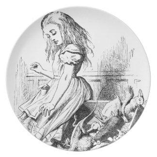 Prato Alice e uma caixa dos animais