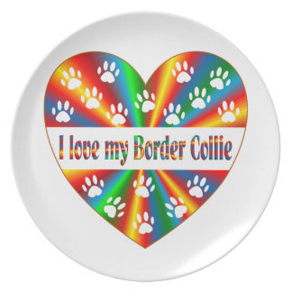 Prato Amor de border collie