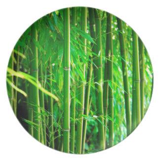 Prato Bambu