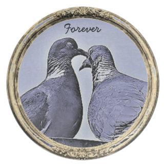 Prato Beijando a placa de coletores das pombas da