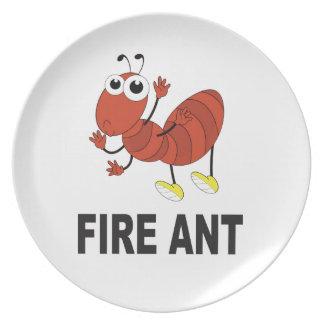 Prato bumbum da formiga de fogo