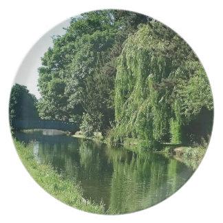 Prato Caminhada ensolarada verde do rio das árvores do