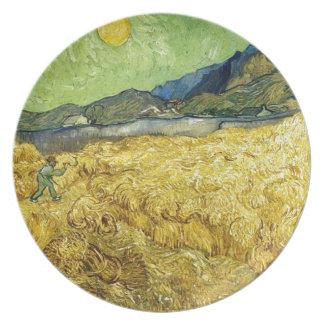 Prato Campos de trigo com a ceifeira no nascer do sol -