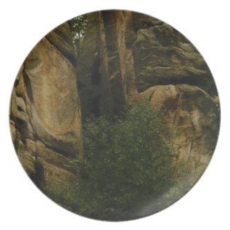 Prato cara amarela da rocha com árvores