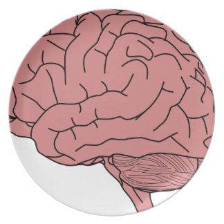 Prato Cérebro humano