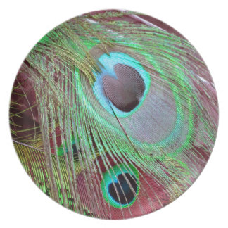 Prato De Festa A pena de fluxo do pavão dos olhos azuis
