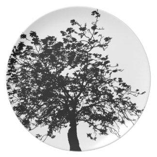 Prato De Festa Árvore