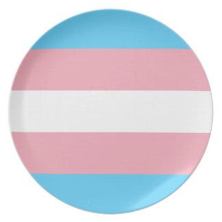 Prato De Festa Bandeira do orgulho do Transgender - arco-íris do
