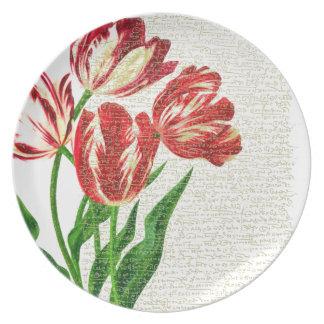 Prato De Festa Caligrafia vermelha das tulipas