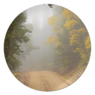 Prato De Festa Cruzamento na névoa do outono