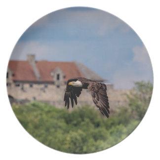 Prato De Festa d Eagle que passa o forte Ticonderoga