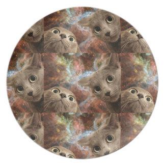 Prato De Festa Dois gatos cinzentos no espaço antes de uma