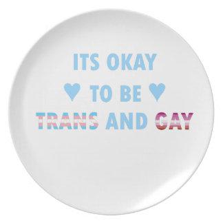 Prato De Festa É aprovado ser o transporte e o gay (v3)