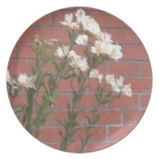 Prato De Festa Flores no tijolo